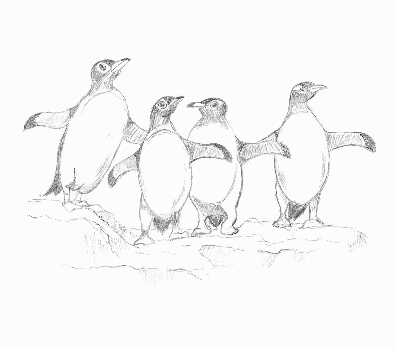 Skizze von vier Pinguinen auf einer Eisscholle